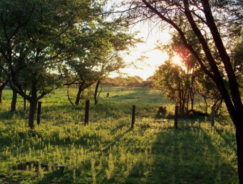 Marakele NP, Thabazimbi