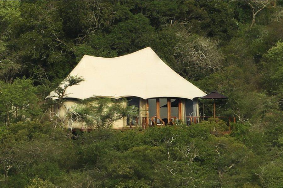 Thanda Safari Tented Camp